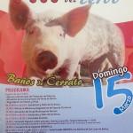 jornada-matanza-cerdo-banos-cerrato-2015-bresan